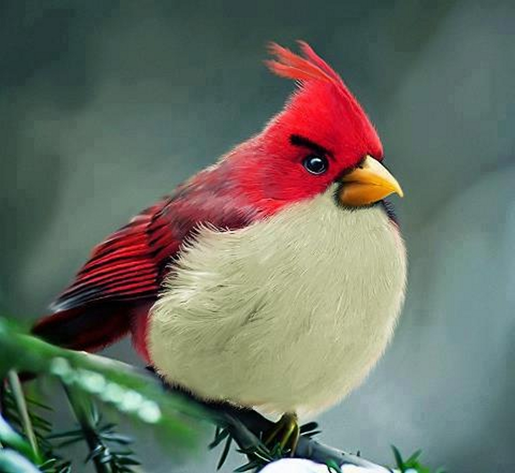 Dear Webby Humor Letter Blog Is Verizon Really Going To Use Aol Mail Cuddle Me Pajamas Red The Angry Birds Movie He Greeted Her With A Hug And Long Kiss Gave Another An Even Longer When Left Later Wifes Roommate Commented Your Pastor