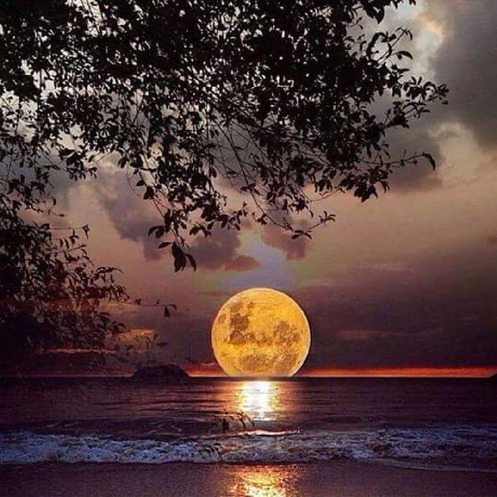 http://webby.com/humor/i/Moonset-L.jpg